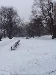 snowimage1 - Copy